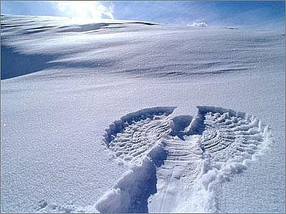 Picture from here: http://jameswoodward.files.wordpress.com/2008/12/snow20angel-main_full.jpg