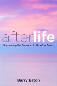 afterlife book cover